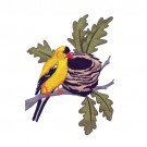 Goldfinch And Nest