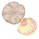 Seashells 11