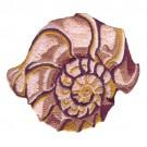 Seashells 13