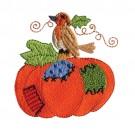 Proud Bird On Pumpkin