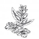 Tropical Floral Sketches Embroidery Design Collection