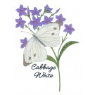 Cabbage White Butterfly Scrapbook Embroidery Design