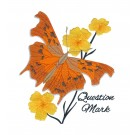 Question Mark Butterfly Scrapbook Embroidery Design
