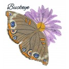 Buckeye Butterfly Scrapbook Embroidery Design