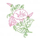 Botanical Outlines I