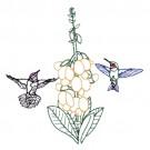 Hummingbird 20