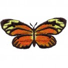 Orange Butterfly with Rounded Wings