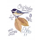 Bird213 Chickadee Bird Study Embroidery Design