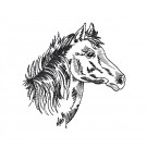 Prairie Horse Head Embroidery Design