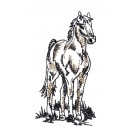 Standing Magnificent Horse Embroidery Design