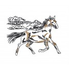 Countryside Prairie Horse Embroidery Design