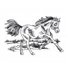 Running Prairie Horse Embroidery Design