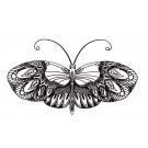 Butterfly 4 Zen Garden Sketch Embroidery Design