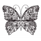 Butterfly 5 Zen Garden Sketch Embroidery Design