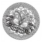 Butterfly Circle 1 Zen Garden Embroidery Design