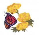 Butterfly 24