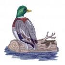 Duck On Log 2