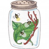 Bug Jar