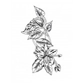 Tropical Floral Sketch Free Embroidery Design