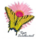 Butterfly Scrapbook Embroidery Designs
